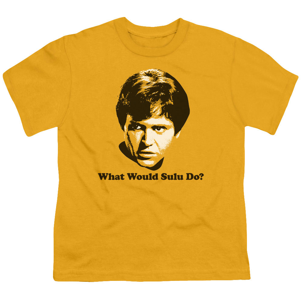 Star Trek What Would Sulu Do
