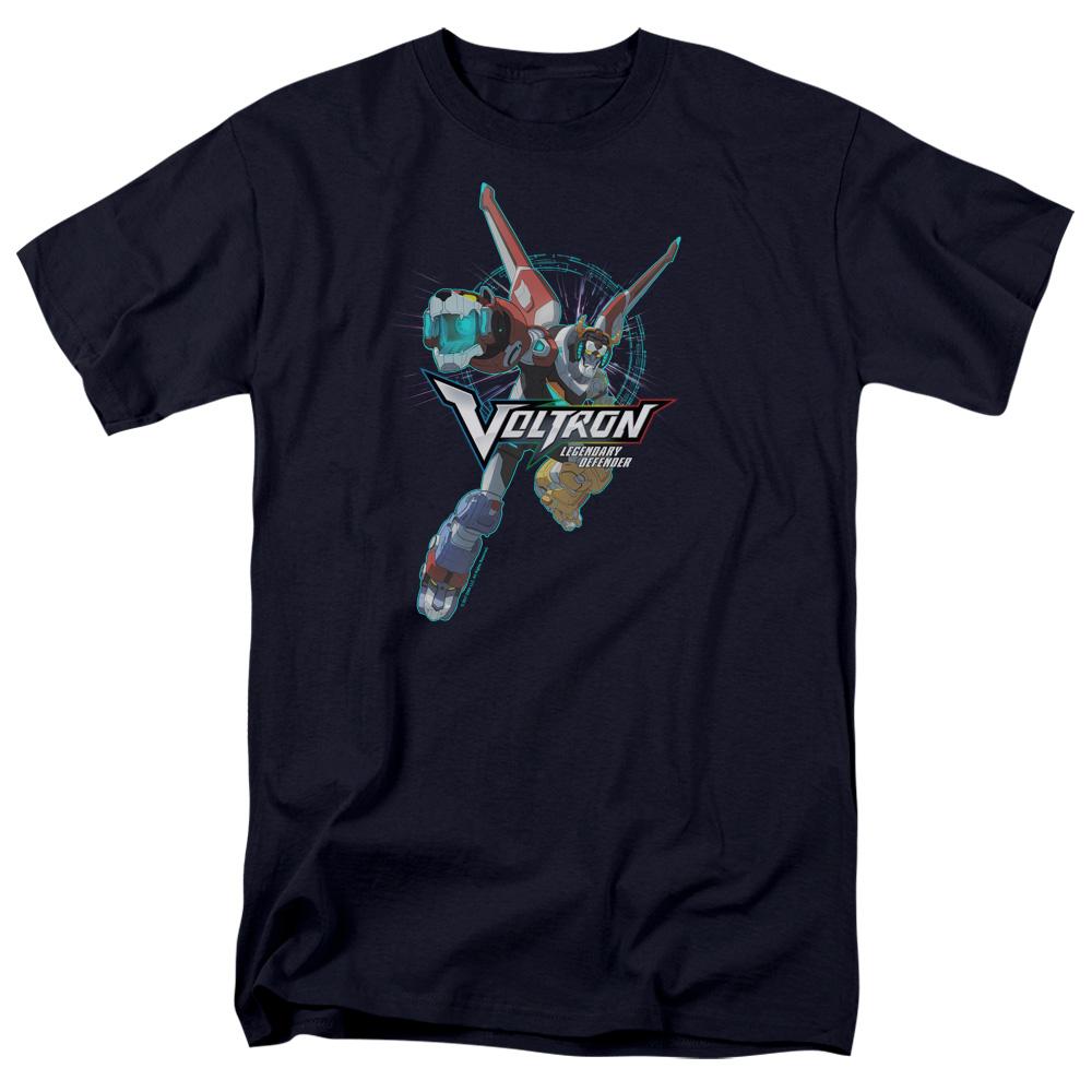Defender Pose Voltron