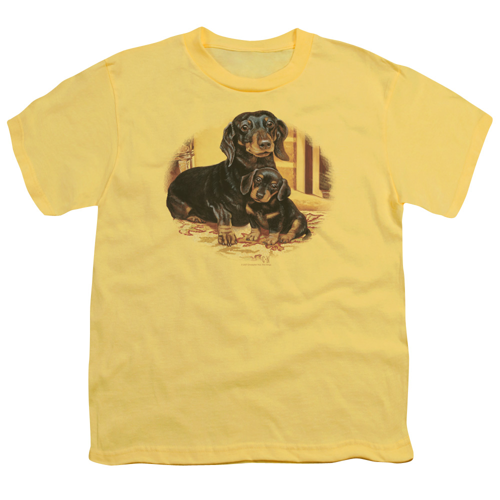 Wild Wings Wild Life Picture Perfect Dachshunds Dogs Kids T-Shirt